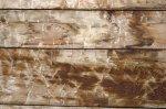 idealne drewno na meble